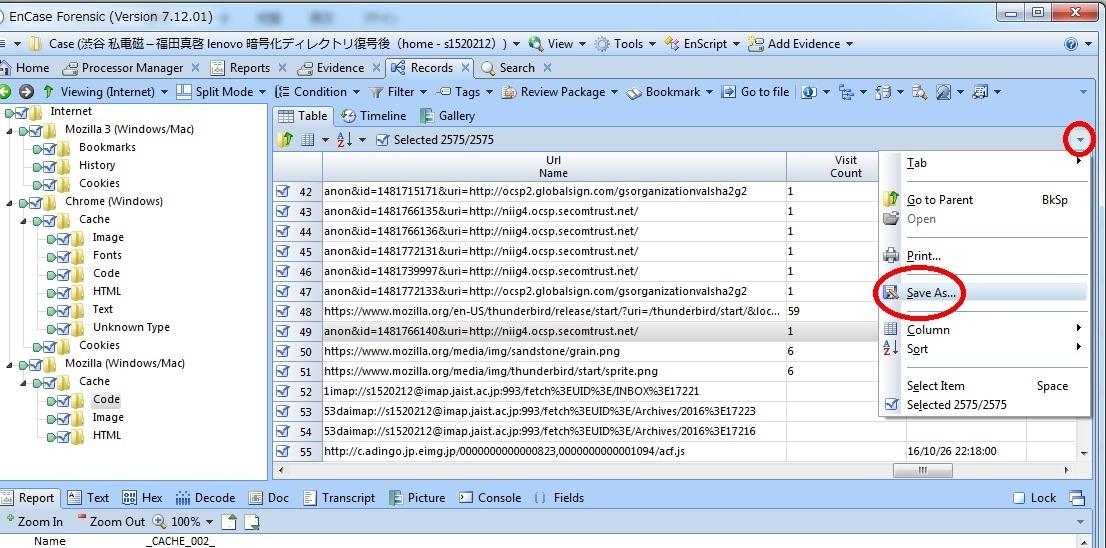 EnCase テーブルペインのExport(TAB区切りtxt).jpg